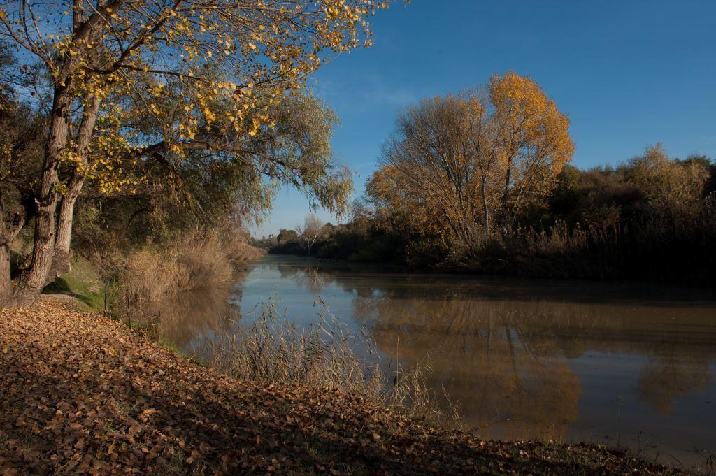 riverofjoy-bloemfontein00.jpg